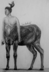 Centaur by IrinaAsphodel