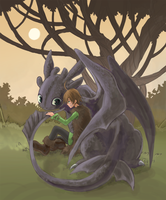 Hiccup and Toothless by t-jam