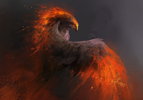 Fire Bird - Sketch by Nigreda