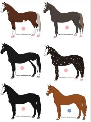 HARPG Horses for Sale by SunnyBlueDay