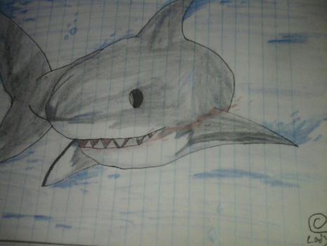 quick shark sketch by jeticer