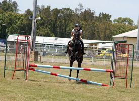 STOCK Showjumping 365 by aussiegal7