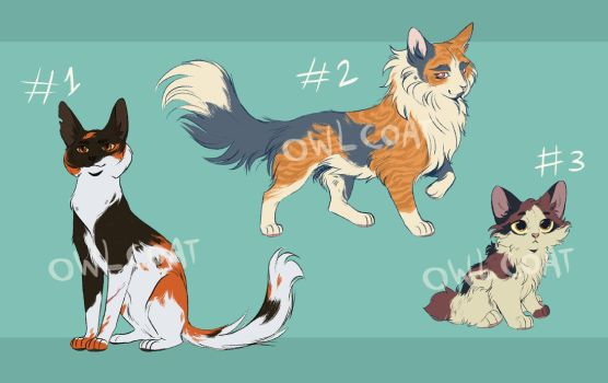 Calico Adoptables (CLOSED) by OwlCoat