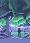 Northern Lights by olivier2046