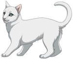 White Cat by TokoTime