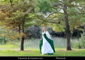 Forest maiden - Stock Model Reference 4 by faestock