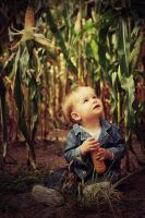 Child of the Corn by freemax