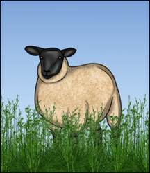 Spring Sheep by AvalonSparkles