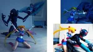 Sailor MOON SH FIGUARTS by Digger318
