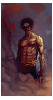 The Wolverine by Alex0wens