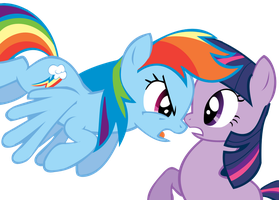 Rainbow dash and Twilight Sparkle by SveZaTe