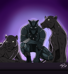Black Panther by DinomanInc