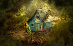 Home sweet Home by Dobi78