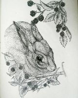 Hare in the Undergrowth by artifexToils