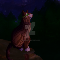Howlstar Contemplation by Uki-U