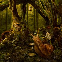 Mossy music by SylwiaS