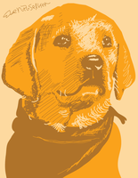 Yellow vector dog by SnD-Frostey