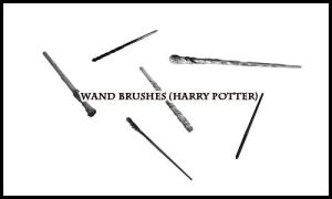 Harry Potter Wands Brushes 1 by Magicgirll91