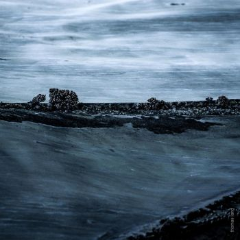 Don't pay the ferryman ... by tholang