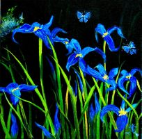 Iris by Buble
