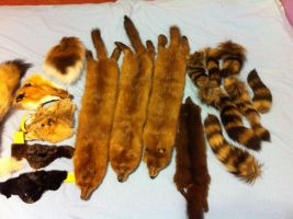 Fur parts for sale by KonekoKaburagi