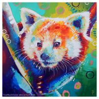 Red Panda by TooMuchColor