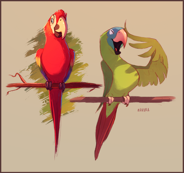 The Macaw and the Conure by Naviira