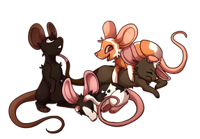 Pet Mice by wrensw