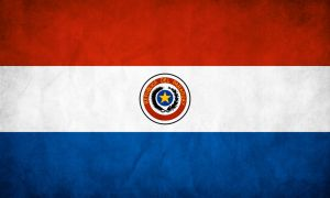 Paraguay Grunge Flag by think0