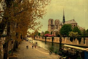notre dame church / paris by oeminler