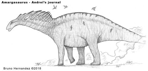 Amargasaurus full body reference - Primitive War by Christoferson