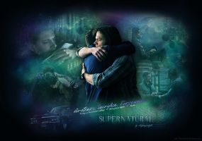 SPN - Brothers, Sacrifice, Forgiveness (Wallpaper) by lilyanjudyth