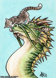Dragon and Kitten by KytheraOA