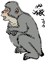 clipart_japanese-macaque by hansendo