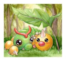 Caterpie Weedle Campout