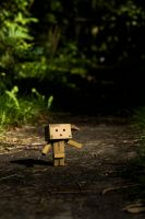 danbo in the forest by InV4d3r