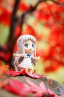 Colors of Autumn by Miko-Bura