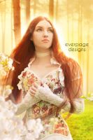 Forest of Brightness by Everpage