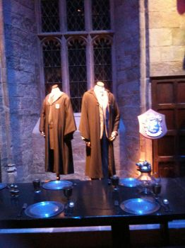 Costumes - Harry Potter by samanthanagel1567