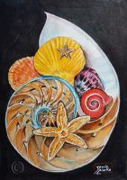 World Watercolor Month - Day 11 (Shells + Stars) by Harmony1965