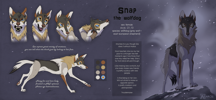 Snap the wolfdog reference sheet 2017 by Astarcis