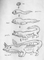 Rough sketch: Dragon Lifecycle concept by Quinn-Red