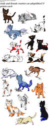 Warrior cats adoptables closed by Sinnamon-Snaps