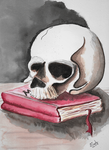 Skull and book watercolor remake by SulaimanDoodle