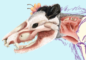 W.I.P. Undead Opossum Update by gearsGlorified