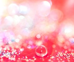 Bokeh fix by pqphotography