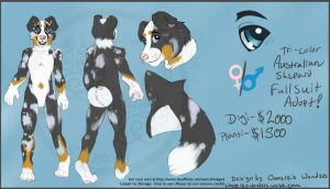 Aussie Shep Premade Design -FOR SALE AS FURSUIT- by Woozles-Wonders