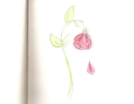 A Rose by JustaBambi