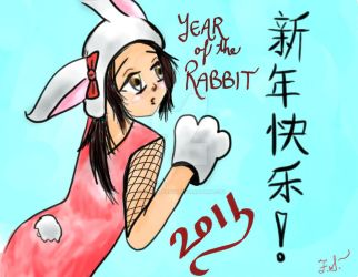 APH: Year of the Rabbit 2011 by FlamingSerpent