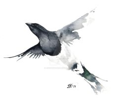 Magpie. by JacobKihlgren